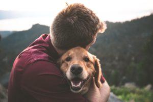 犬と暮らす幸せ